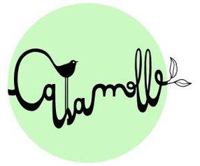 CASAMOLLE