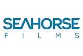 SEAHORSE FILMS LLP (MIDLANDS)