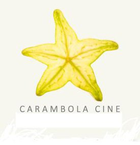 CARAMBOLA SRL
