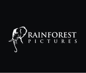 RAINFOREST PICTURES LTD