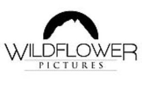WILDFLOWER PICTURES