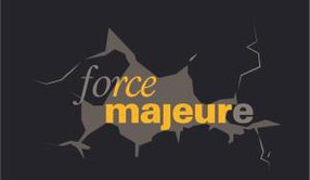 FORCE MAJEURE LLC