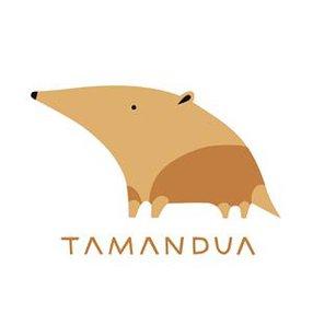 TAMANDUA ESTUDIO