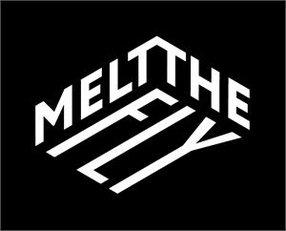 MELT THE FLY LTD