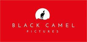 BLACK CAMEL PICTURES