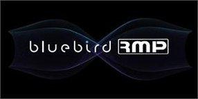 BLUEBIRDRMP DUBBING