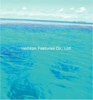 HORIZON FEATURES CO., LTD.