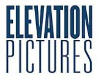 ELEVATION PICTURES CORP