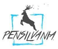 PENSILVANIA FILMS