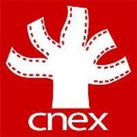 CNEX FOUNDATION LIMITED