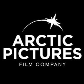ARCTIC PICTURES LIMITED