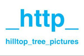 HILLTOP TREE PICTURES GMBH